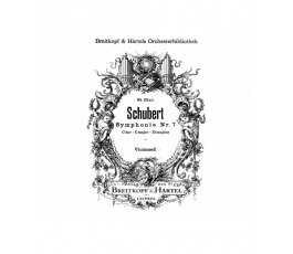 SCHUBERT SYMPHONIE NR.8 C...