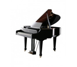 ROSSINI LISZT LA DANZA PIANO